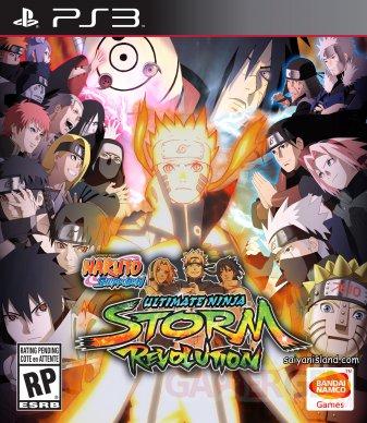 Naruto Ninja Storm Revolution